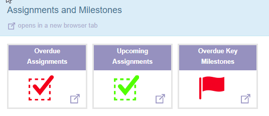 reports_-_assignments_and_milestones.png